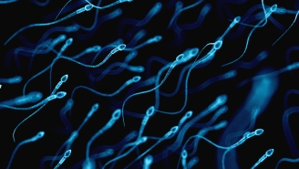 Man Named The 'Sperminator' Who Gives Women Free Sperm Becomes A Father For 50th Time, This Time A Homeless Woman