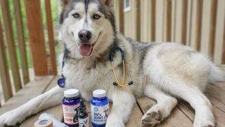 HEMP OIL FOR DOGS: Pup Science Care Packs Promote Healthy, Active Pups