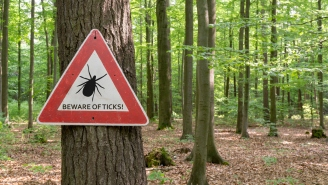 Pentagon May Have Created Weaponized Ticks And Released Them Into The Wild