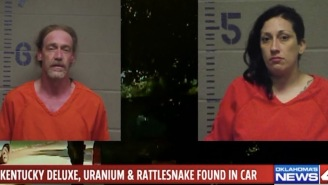Yippee Ki-Yay Motherf*cker: Couple Arrested For Driving A Stolen Car Filled With Uranium, Guns, Whiskey And A Rattlesnake