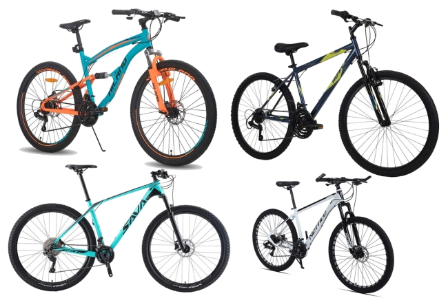 Best Mountain Bikes 2021