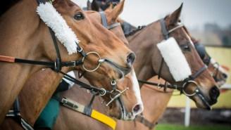 A Horse Racing Bettor Won $2.2 Million On A 20-Cent Ticket After Hitting An Outrageous Jackpot