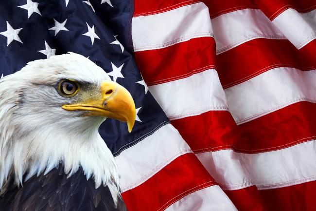 American Bald Eagle patriotic flag