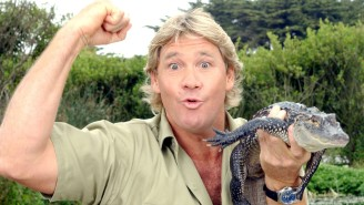 Miami Marlins Apologize For Reminding The Rays That They Killed Steve Irwin
