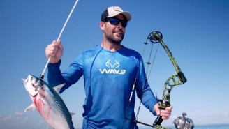 Bow Fishing For Bonito With Sharks Swarming All Over Is Taking Fishing To The Extreme
