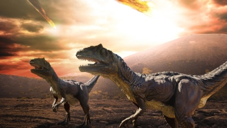 Unearthed Rocks Provide Stunning Details Of Day Dinosaurs Were Killed By Asteroid With Force Of 10 Billion Atomic Bombs