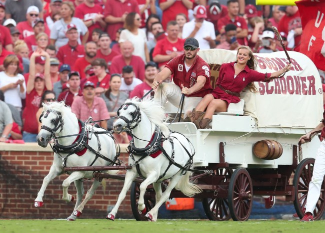 Oklahoma's Sooner Schooner mascot wagon flips over and horses run wild during game.
