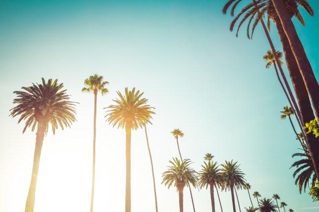 Bel Air Beverly Hills California