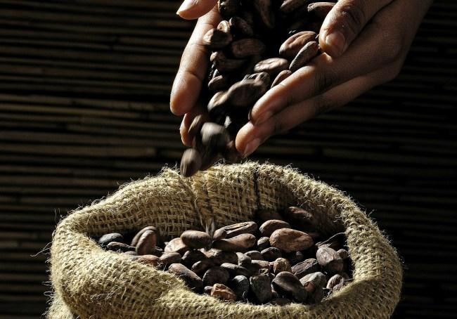 Origin And History Of Chocolate