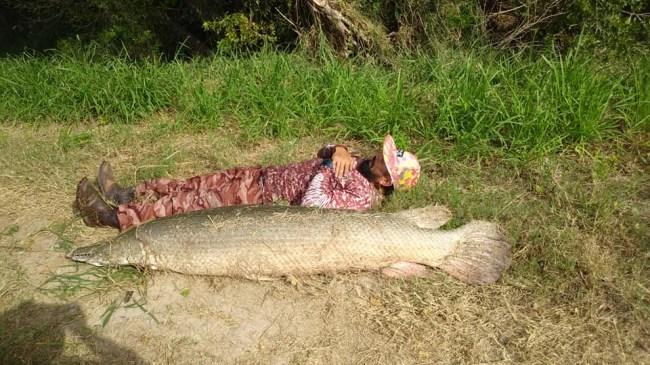 7-foot 200-pound alligator gar caught kayak fishing in South Texas