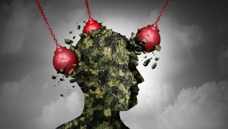 A Doctor Explains CBD's Benefits For Post-Traumatic Stress Disorder (PTSD)