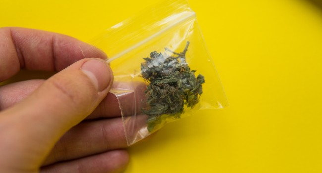 Doctors in Australia removed a bag of weed that was stuck in a man's nos, for 18 years.