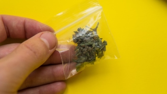 Can Marijuana Kill You Dead?