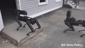 Massachussetts Police Secretly Used Robot Dogs For Three Months So The Countdown To The Robot Uprising Has Begun