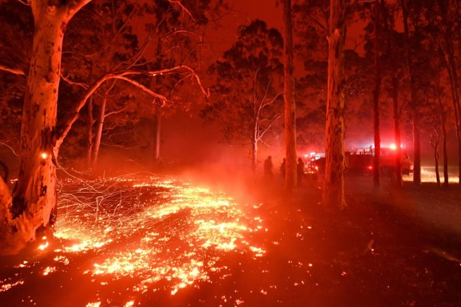 Models are giving out nude photos to people who donate money towards helping the Australian wildfires.