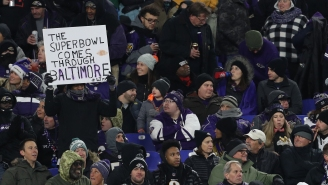 Fan Collapses And Dies At Ravens-Titans Playoff Game, The Third Death On M&T Bank Stadium Grounds In Less Than A Year