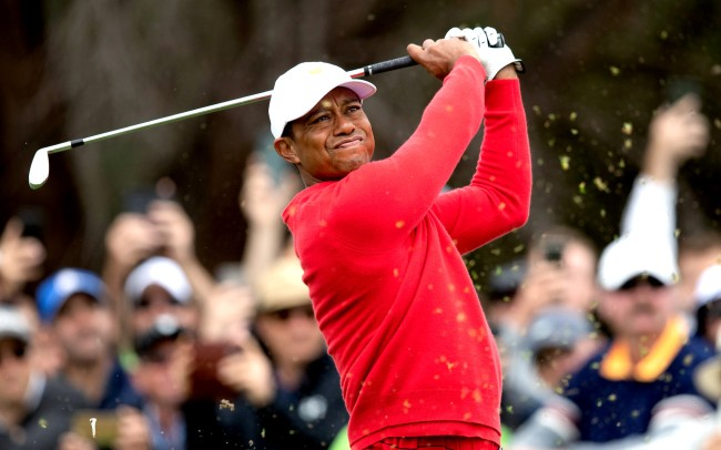 tiger woods hole in one story