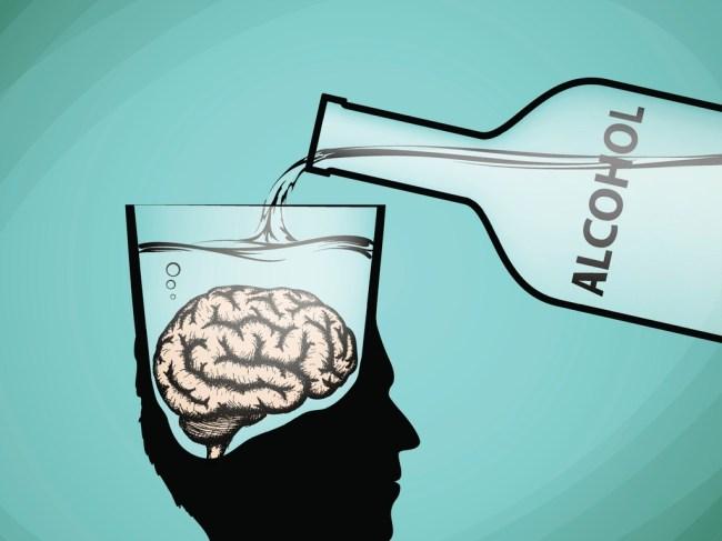 alcohol brain