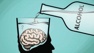 Does Alcohol Really Kill Brain Cells Dead?