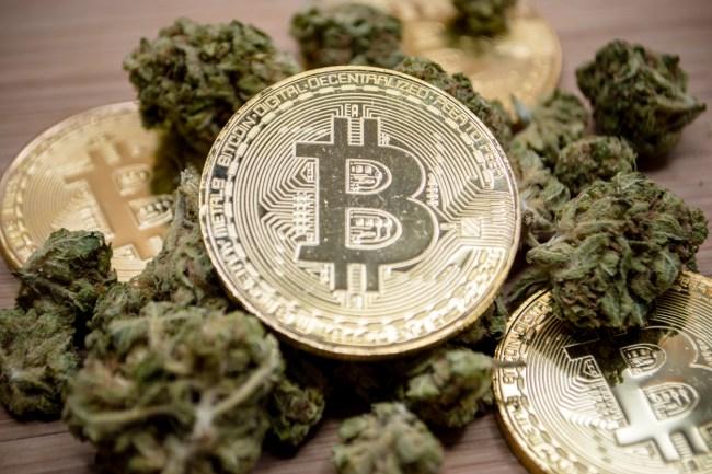 irish drug dealer loses bitcoin