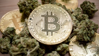 An Irish Drug Dealer Lost Access To Almost $60 Million Worth Of Bitcoin When His Passwords Were Incinerated After His Arrest