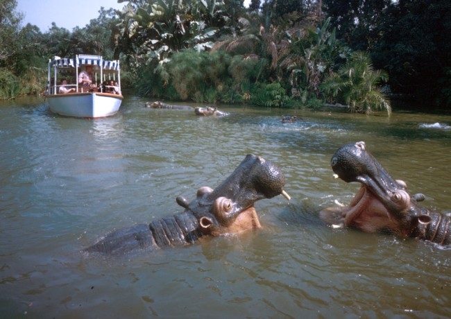 Video show boat in Jungle Cruise ride sinks with guests inside at Disney World.