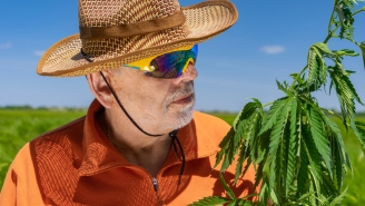Marijuana Use By Senior Citizens Is Sky High