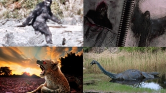 Which Legendary Creatures Might Actually Exist? Here Are The Ones Most (And Least) Likely To Walk (Or Swim) Among Us
