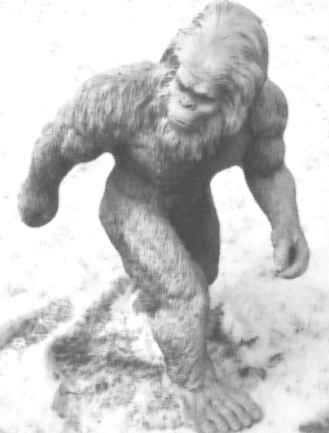 Mystery Of Bigfoot Spotted On A Traffic Camera In Washington Solved
