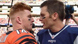 Andy Dalton Could Reportedly Be Playing In A Patriots Uniform Next Season If Tom Brady Doesn't Come Back To New England