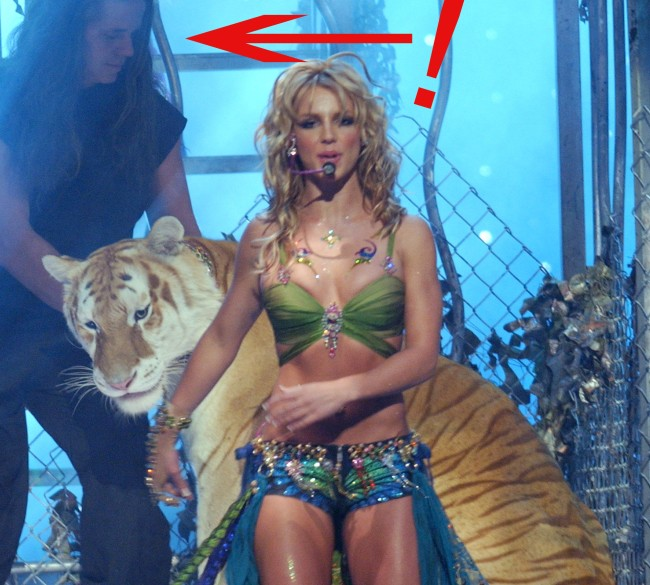 Britney Spears Has Ties To Doc Antle Of Tiger King Fan Reactions