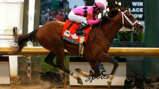 27 Horse Racing Pros, Including Maximum Security's Trainer, Charged In Major Drug Scheme