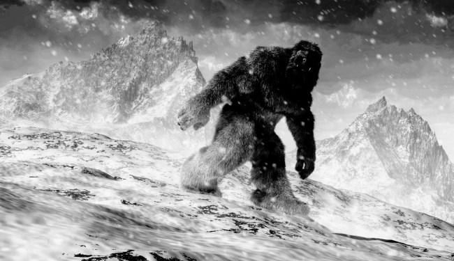 Oil Field Worker In Canada Captures Bigfoot Sighting On Dashcam