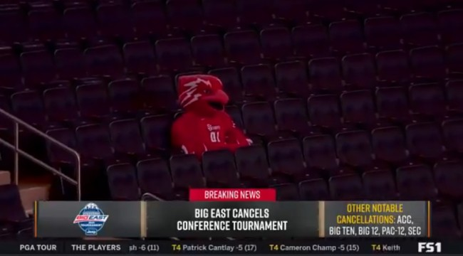 Viral Photo Of The St Johns Mascot Fans One Shining Moment Parody