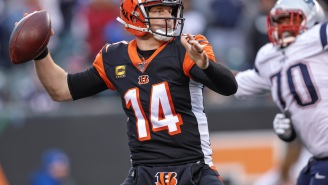 The Bengals Released QB Andy Dalton And Everyone Made The Same Joke About Bill Belichick Wanting To Sign Him To The Patriots