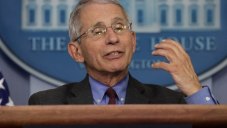 Dr Fauci Says 'It's Conceivable' There Will Be Large Crowds At Sporting Events Without A Vaccine In The Near Future
