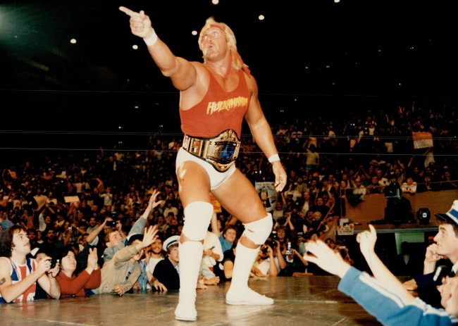 Hulk Hogan biopic Netflix
