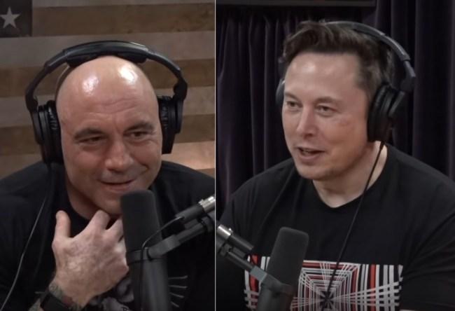 Elon Musk Mind Reading