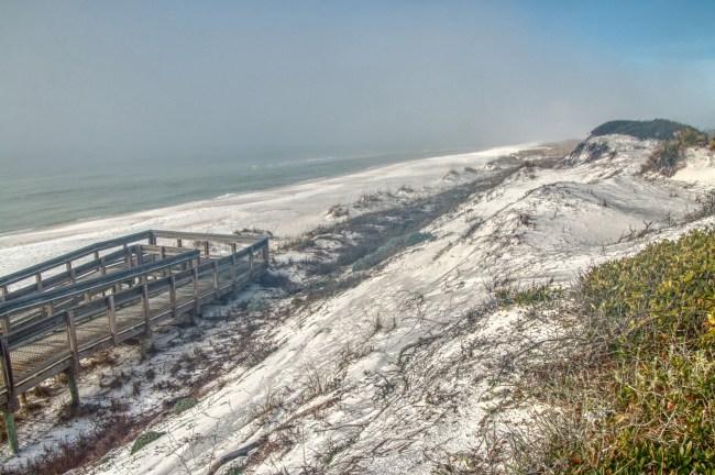 Grayton Beach State Park Florida #1 beach in America