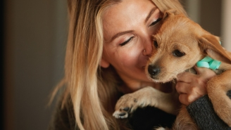 ATTN Pet Owners – Save 30% On Your First Autoship Order At Chewy
