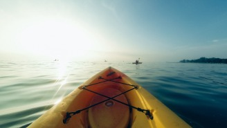 Great White Shark Ominously Circles Kayaker In Monterey Bay Just Miles Away From Recent Fatal Shark Attack