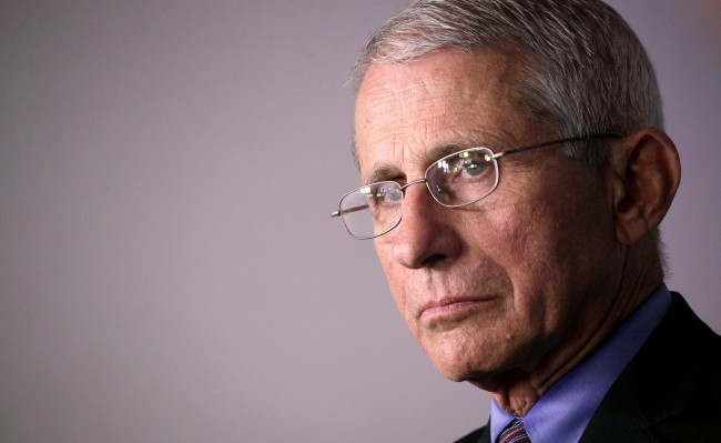 Dr Anthony Fauci Says Things Wont Get Back To Normal For A Long Time