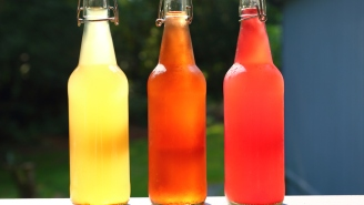 Reviewing The Best Hard Kombucha Brands Of 2021