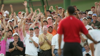 Honoring The Most Cringeworthy Golf Dad Reactions To Famous Tiger Woods Moments