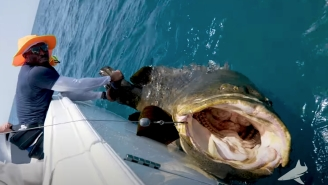 Cowboys Safety Haha Clinton-Dix Caught A Huge Goliath Grouper The Size Of A Gargoyle