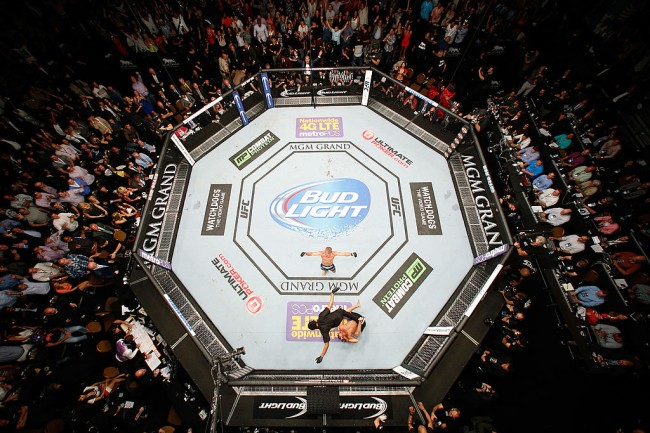 hypothetical celebrity ufc fights results