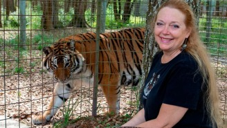 Woman Who Definitely Didn't Feed Her Husband To A Tiger Is Angry About Having Fans At The Super Bowl