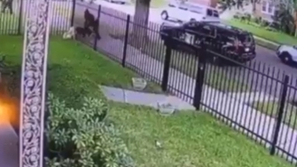 Watch A Detroit Cop Fatally Shoot A Dog Through A Fence For Biting The Nose Of A K9 Officer