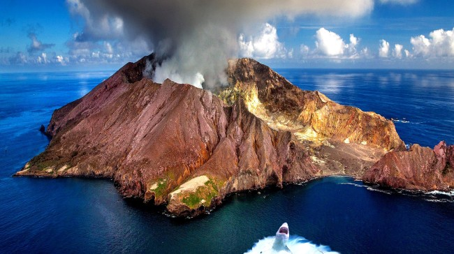 Sharks Discovered Living Inside An Active Volcano Baffle Scientists