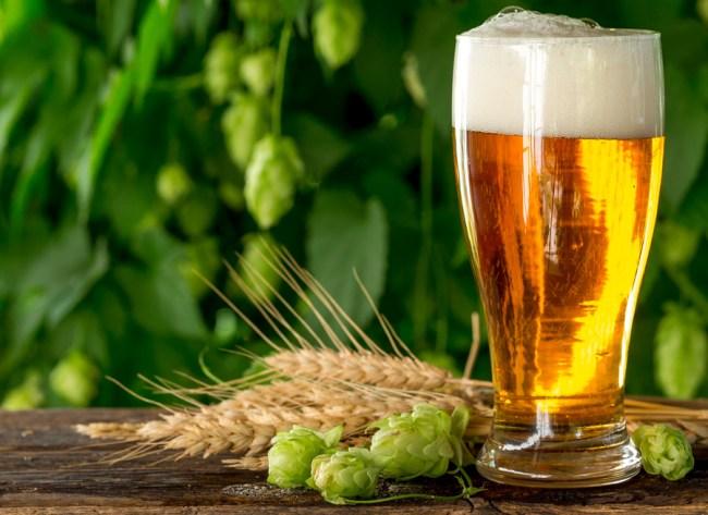 climate change altering beer taste hops